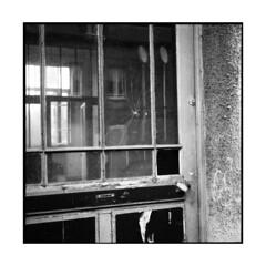 badin • barentin, normandy • 2013