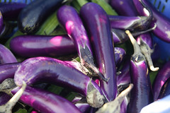 vegetable, eggplant, purple, produce, food,