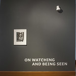 On Watching and Being Seen (Aug 27 - Oct 19, 2013)