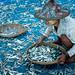 Myanmar, Ngapali fishing village, DSC_6040