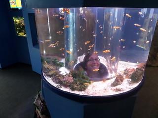 Findet Nemo... Äh Linda...