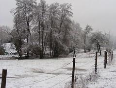 This winter's snow