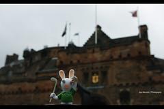 The Rabbid Looking for the Edinburgh's Castle