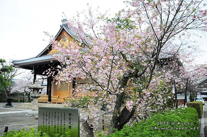 妙蓮寺 (1)-1.jpg