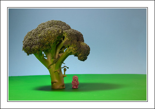 Standing In The Shade Of A Broccoli Tree