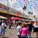 | Border Fest 2014 | Hidalgo, Texas | 2014-03-08 |