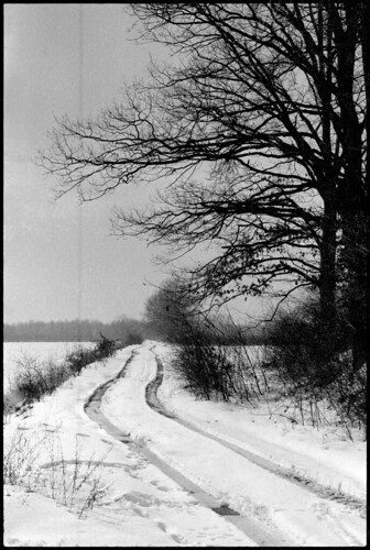blackandwhite snow film landscape blackwhite spring croatia 150 55mm maco analogue grainy agfa rodinal destroyed analogphotography canoscan olympusom1 2010 gekko pushprocess faulty efke agfarodinal up100 vuescan 8800f r09 macoup100 mishandled canoncanoscan8800f location:country=croatia efkegekkomw100 mw100 agfar09oneshot developer:name=agfar09oneshot agfar09 desinec film:brand=efke lens:name=olympusomsystemgzuikoautos55mm112 film:name=gekkomw100 film:name=up100 film:brand=maco camera:brand=olympus camera:name=om1 lens:brand=olympus lens:maxaperture=12 lens:focallength=55mm olympusomsystemgzuikoautos55mm112 film:brand=fotokemika