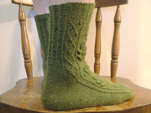 Quercus socks model 3