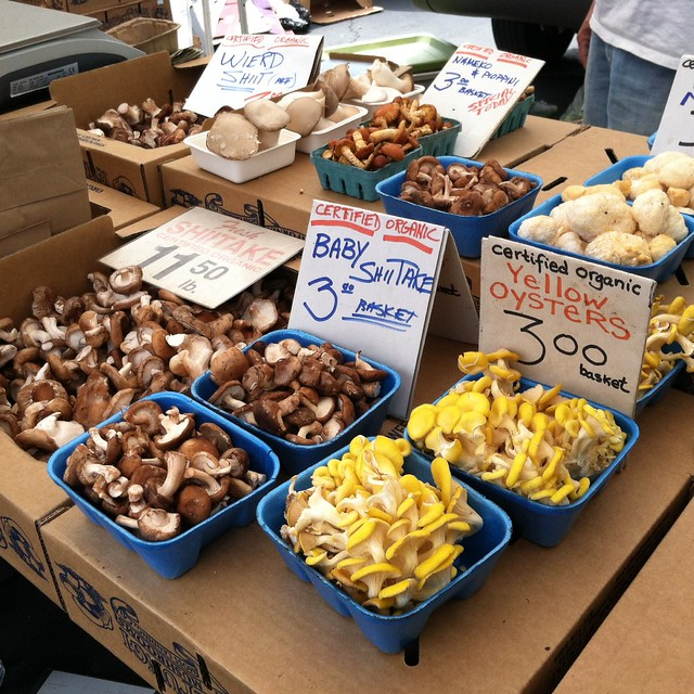 mushrooms @ Daly City Farmers' Market at Serramonte Center