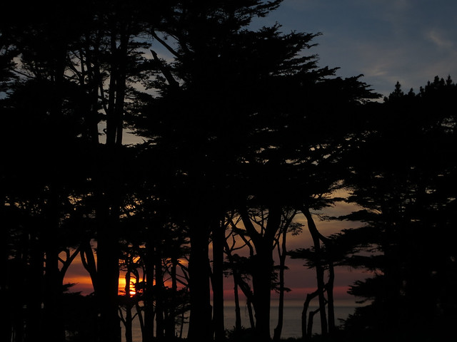 Land's End at Sunset; The Richmond, San Francisco (2014)