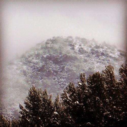 El cim del Montcau entre la neu i la boira #Gelida #Penedès #nevada4F