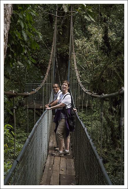Tenorio Rain Forest 2015-02-10 7