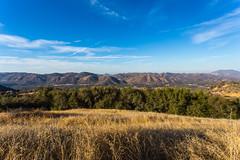 Kings Canyon & Sequoia - 25