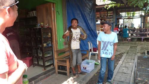 Yogyakarta-4-073