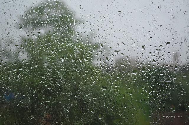 Lluvia dominguera