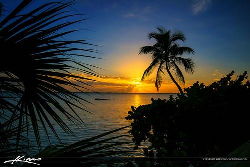 sunrise palm coconuttree indianriverlagoon photomatixpro tonemapping hdrphotography indianriversidepark captainkimo
