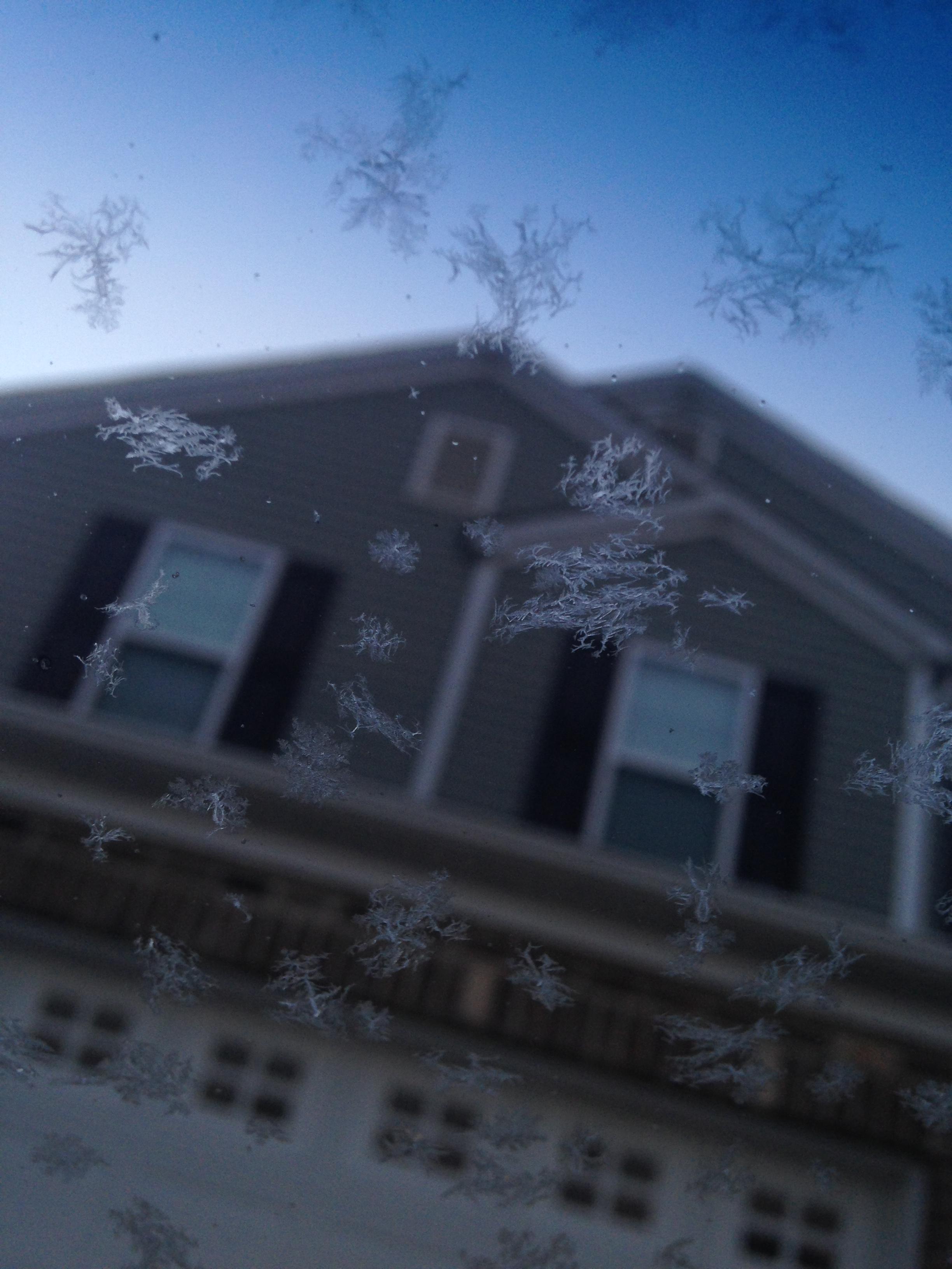 frosty am