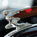 1937 buick hood ornament by pixel fixel