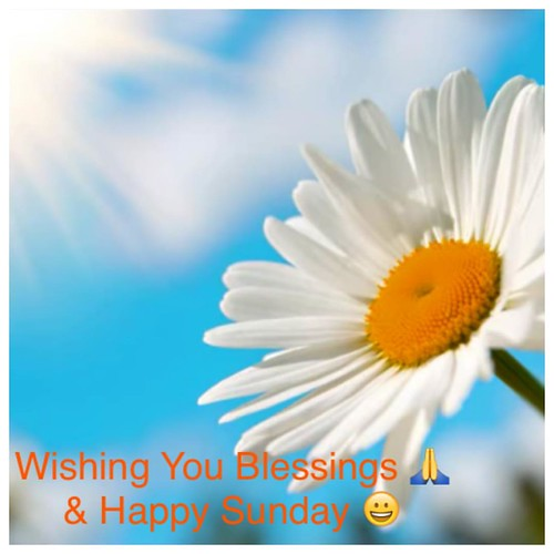 #GoodMorning #Sunday🌞#HappySunday😃 Today I give #thanks to #God for the beauty 🌻in #nature   #ThankYouGod For the #blessings of #light  I received in each #NewDay with #sunrise 🌞& #sunset 🌅 #ThankYouLor