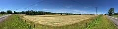 Lovettsville Panorama