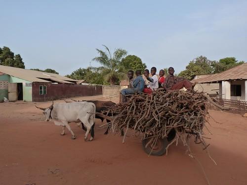 Aldea de Gambia
