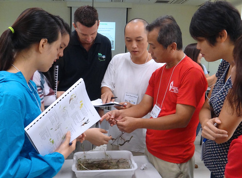 TeamSeagrass Training June 2013