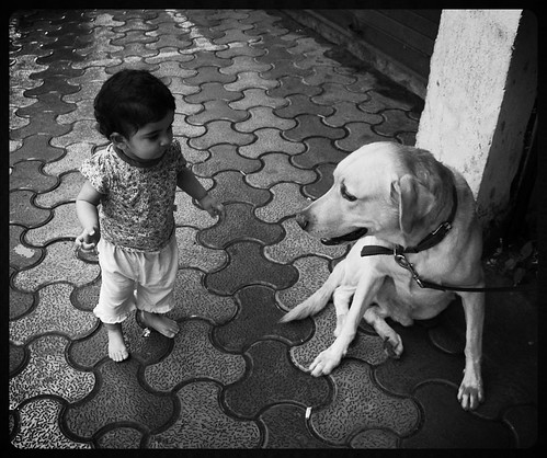 Lucky The Labrador And Nerjis Share A Bond by firoze shakir photographerno1