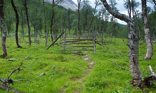 Deer slip rails Skaitidalen