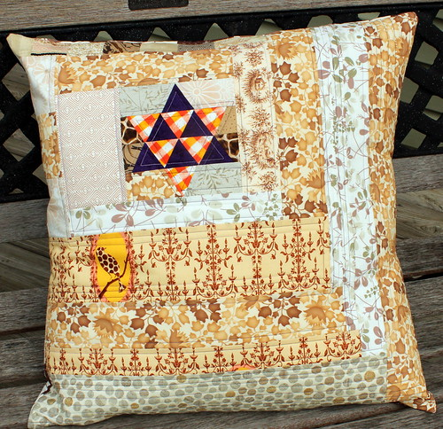 The Lone Star and Lonely Bird Quilted Pillow - ENTRY