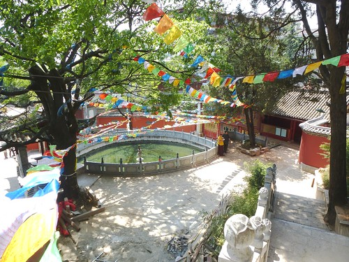 Yunnan13-Lijiang-Temple et Édifices (6)