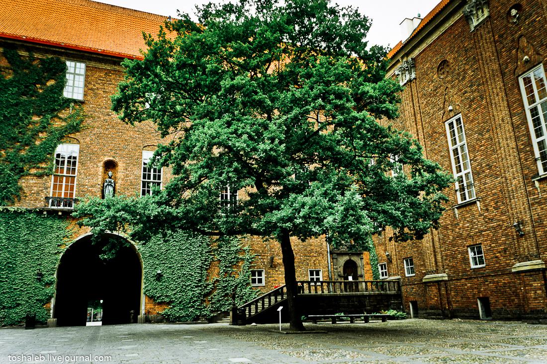 Stockholm_City_Hall-29