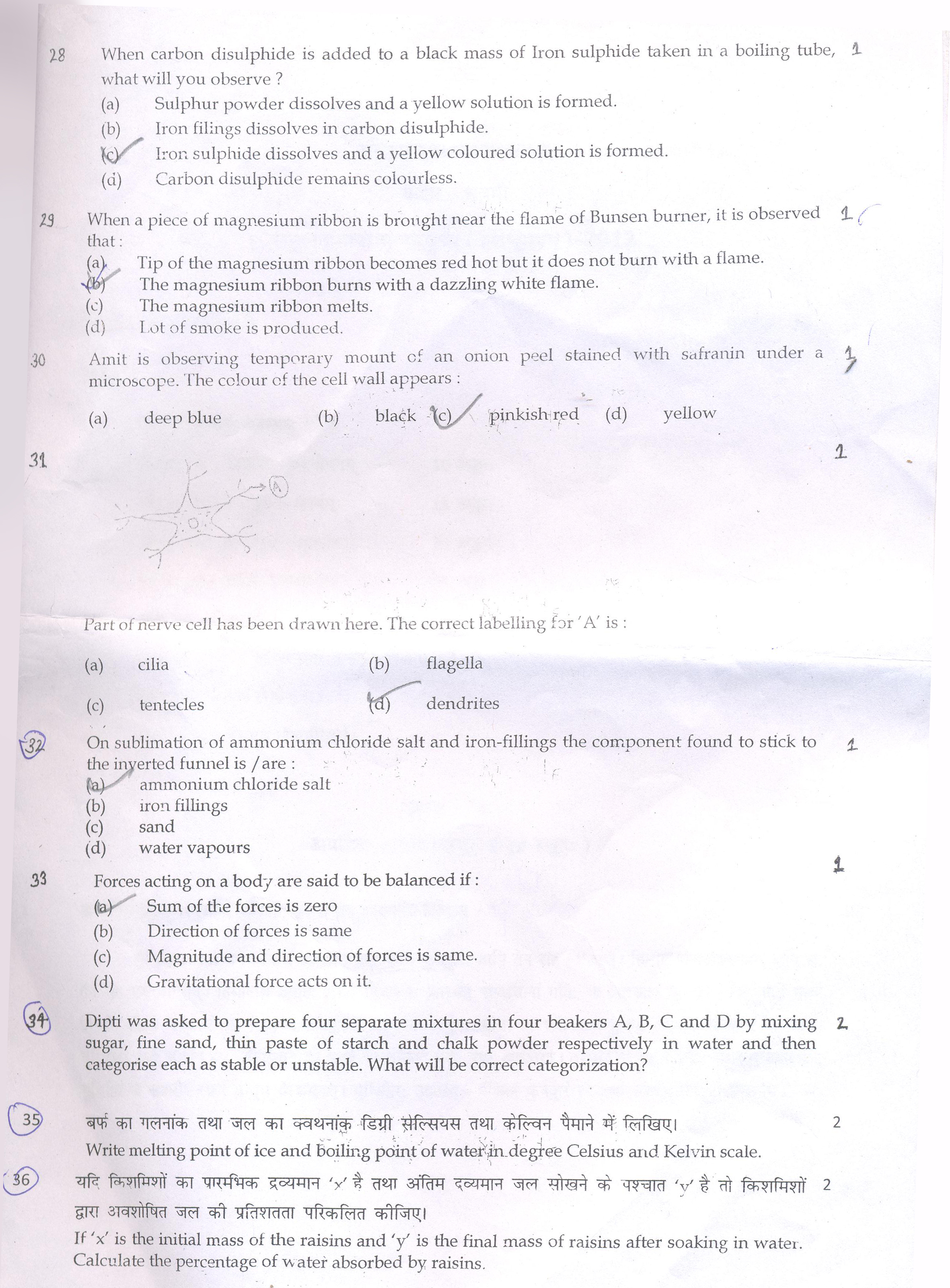 physical science term papers Matric physical science paper 1 2009  physical sciences (p1) 2 sample paper  question 1: one word/term items.