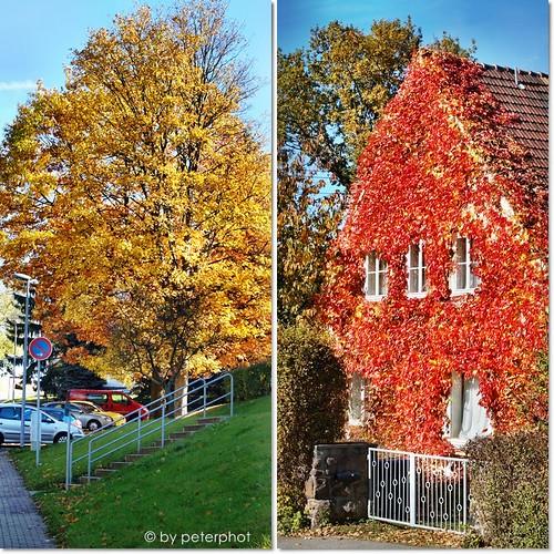 Herbst  in Mittelsachsen