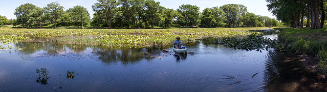 Kayak Fishing in the Lilly Pads