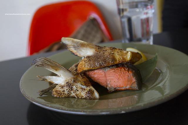 Salmon Kama
