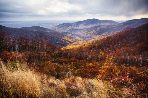 autumn trees red sky orange plants mountains color fall leaves yellow clouds landscape virginia scenery rocks scenic overcast valley shenandoah bushes hdr highdynamicrange