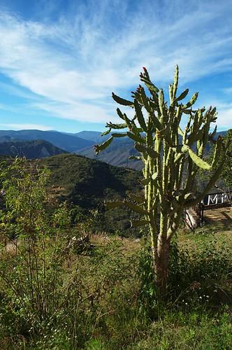 montagne rando mexique vue amatlan ameriquecentrale pueblosmancomunados