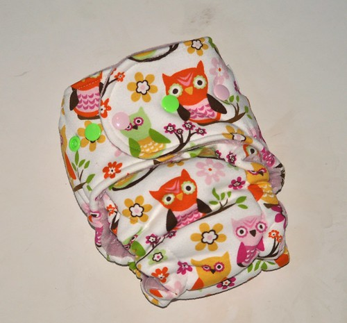 MiniBum Hybrid Fitted  Sweet Owl Cotton Velour