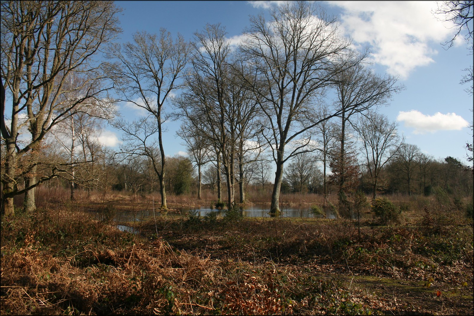 Wooburn Common