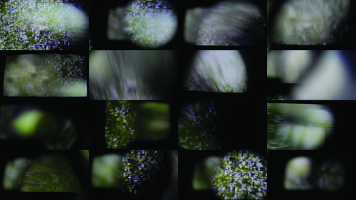 Field Cataract Camera Re-Projection [Stills]