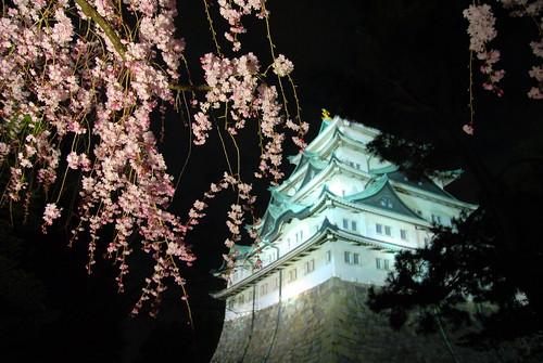 Nagoyajo Night 052r