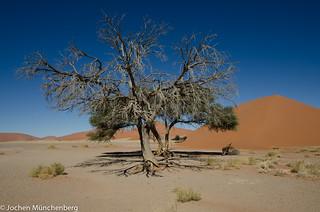 Namibia-2013-004.jpg