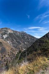 Kings Canyon & Sequoia - 371