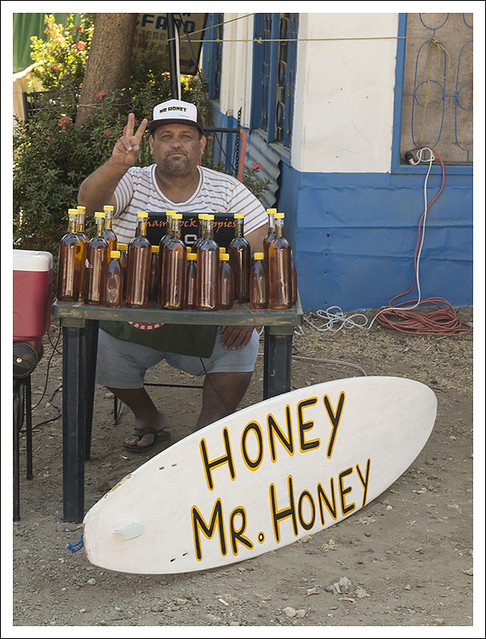 Mr. Honey