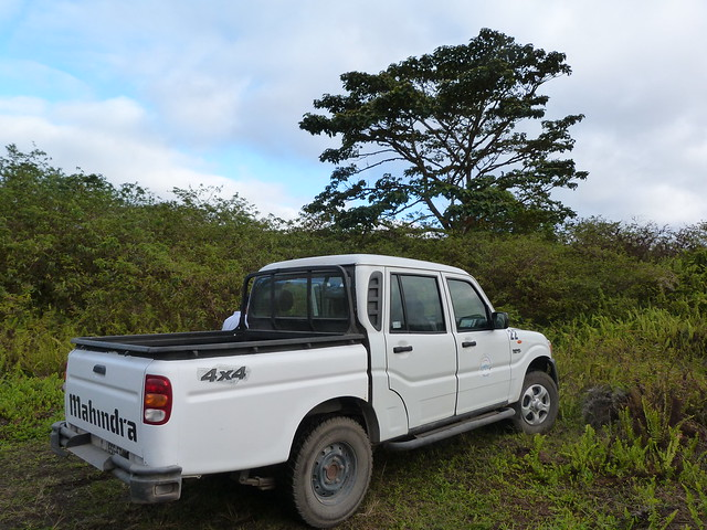 Pick up de islas Galápagos