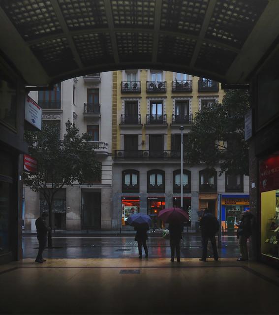 Umbrellas in Madrid (2016)