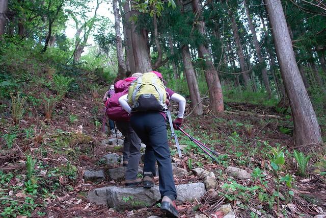 """Searching victory path """"IWAYAMATADANI"""""""