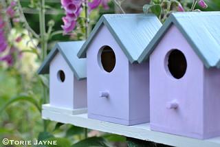 Birdhouses 5