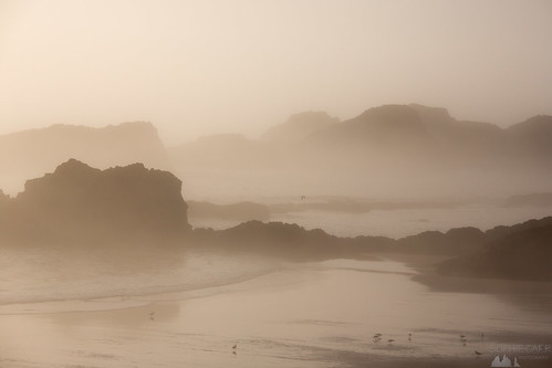 sunset misty fog oregon foggy pacificocean pacificnorthwest stacks