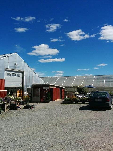 De flestas anledning till ett besök är butiken för sommarblommor och perenner.